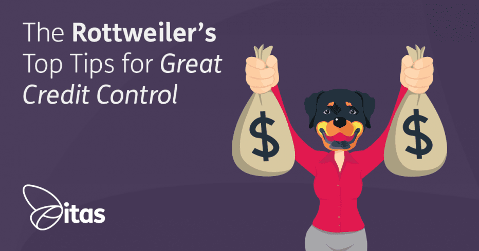 The Rottweilers Top Tips for Great Credit Control